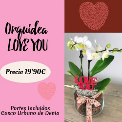 Orquidea Love You