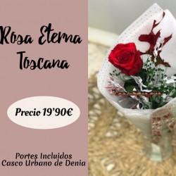 Rosa Eterna Toscana