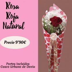 Arreglo de 1 Rosa Roja Fresca