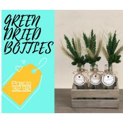 GREEN DRIED BOTTLES